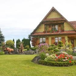 Birkenwald 4 hotels