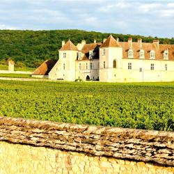 Nuits-Saint-Georges 4 bed and breakfasts