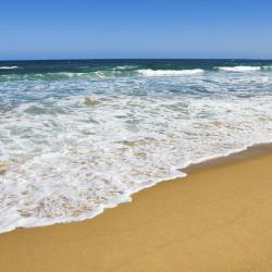 Avoca Beach 27 hotels