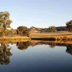 Lilydale 4 hotels