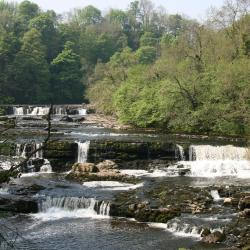 Aysgarth 14 hotels
