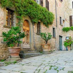 Castellina in Chianti 171 hotels