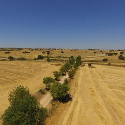 Campo Maior 6 hotels