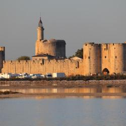 Aigues-Mortes 99 hotels