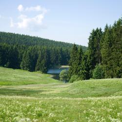 Hahnenklee-Bockswiese 184 otel