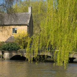 Bourton on the Water 44 vacation rentals