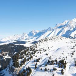 Saint-Gervais-les-Bains 249 hotels