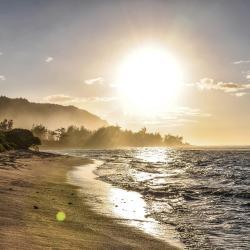 Haleiwa 20 Hotels