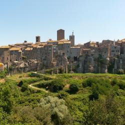 Vitorchiano 30 case vacanze