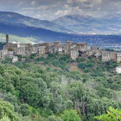 San-Martino-di-Lota 20 hotels