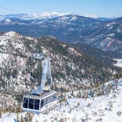 Alpine Meadows 38 hotels