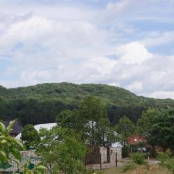 Briukhovychi 8 otel
