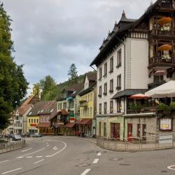 Triberg 35 hotels