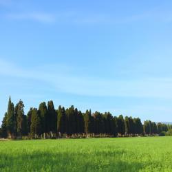 Kastanjeto Karduči 9 smeštaja na selu