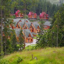 Mykulychyn 161 hotels