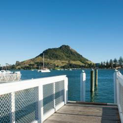 Mount Maunganui 8 homestays