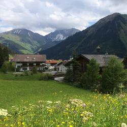 Berwang 33 pet-friendly hotels