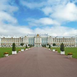 Pushkin 171 hotels