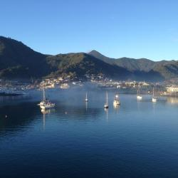 Picton 83 hotels