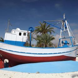 Puerto de Mazarrón 17 pet-friendly hotels