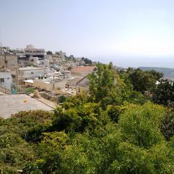 Safed 100 hotels
