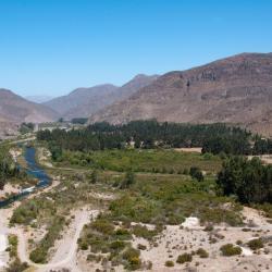 Pisco Elqui 44 hotels