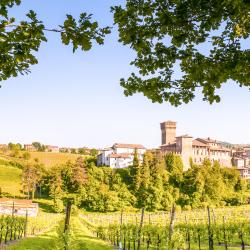 Castelvetro di Modena 11 hotels