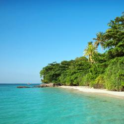 Karimunjawa 4 holiday parks