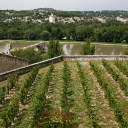 Villeneuve-lès-Avignon 73 hotels