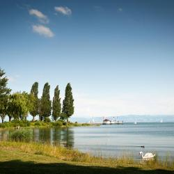 Immenstaad am Bodensee 80 Hotels