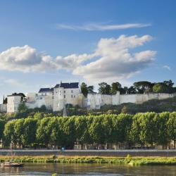 Chinon 45 hotels