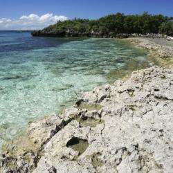 Malapascua Island 40 hotels