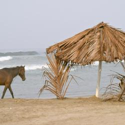 Playa Azul 6 hotels