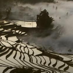 Yuanyang 19 hótel