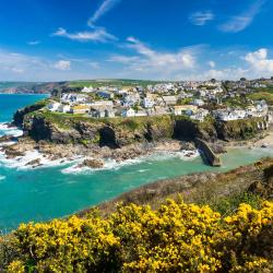 Port Isaac 55 vacation rentals