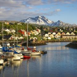 Narvik 13 hotels