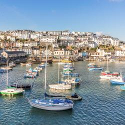 Brixham 120 hotels
