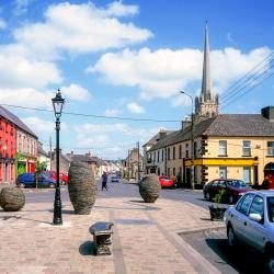 Carlow 27 hotels