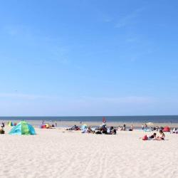 Renesse 17 pet-friendly hotels