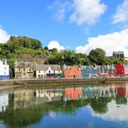 Tobermory 26 hotels