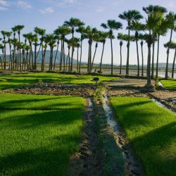 Thanh Hóa 105 hôtels