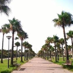 Sidi Rahal 154 hôtels