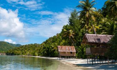 Hotels in Papua New Guinea