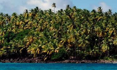Cheap Hotels in French Guiana