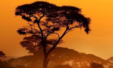 Hotels in Kenya