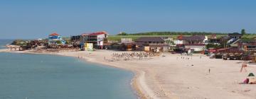 Hotele w dzielnicy Vama Veche Beachfront