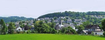 Hotels in Niedersfeld