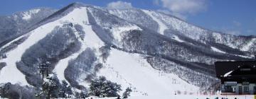 斑尾高原スキー場のホテル