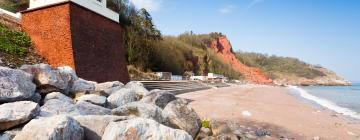 Hotels in Babbacombe