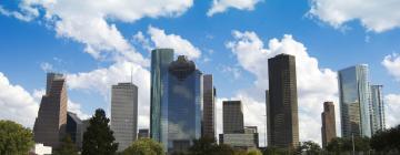 Hôtels dans ce quartier: Downtown Houston